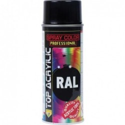 PINTURA SPRAY TOP RAL 9005...